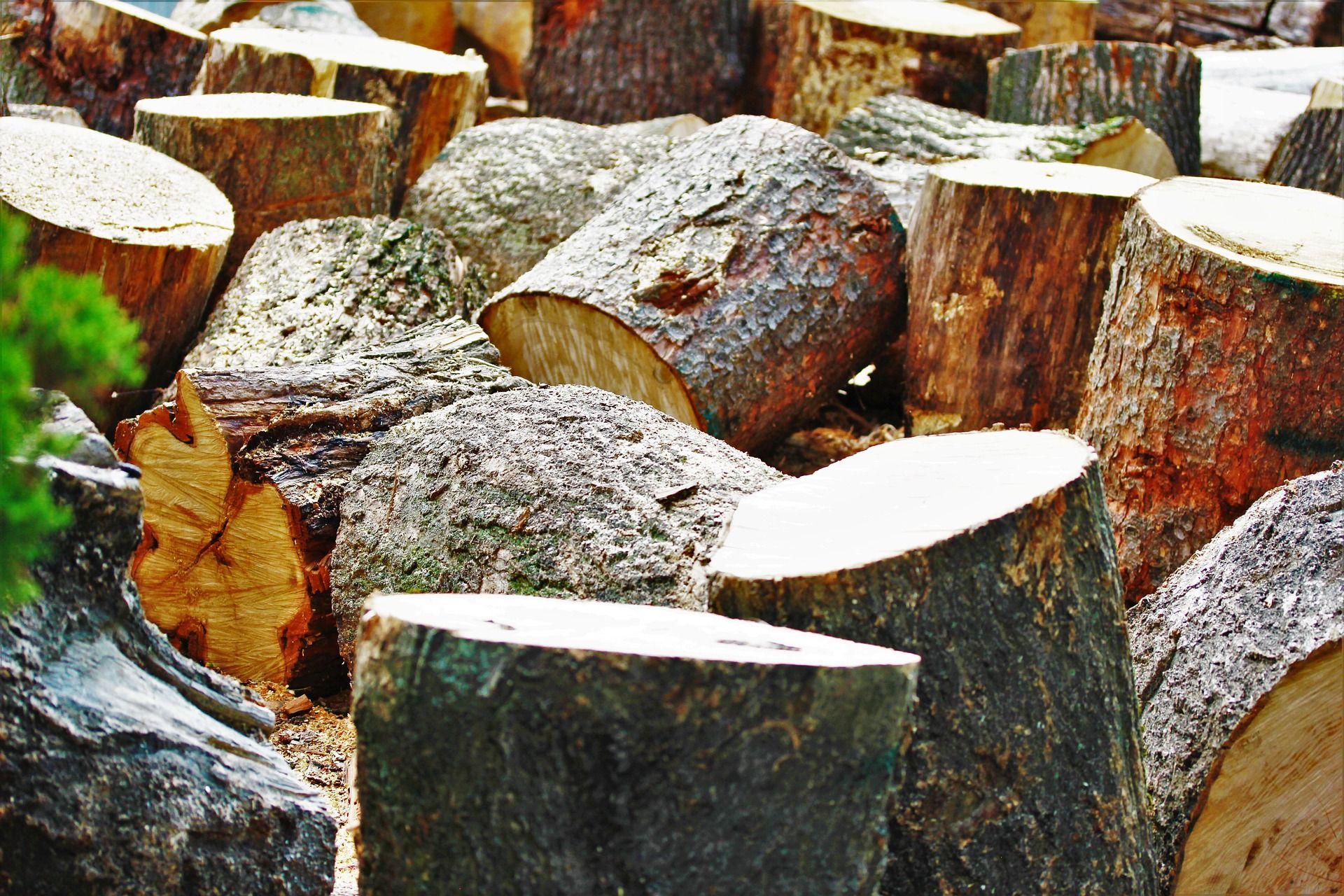 calentar con biomasa leña